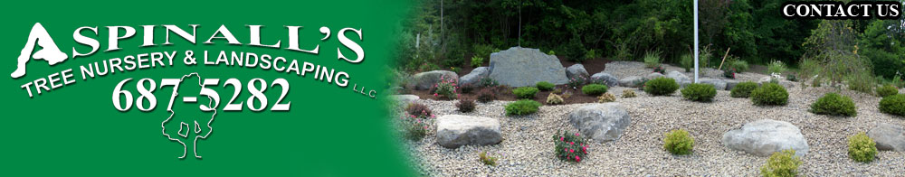 Landscape Services - Aspinall's Landscaping And Tree Nursery Syracuse, NY Landscape